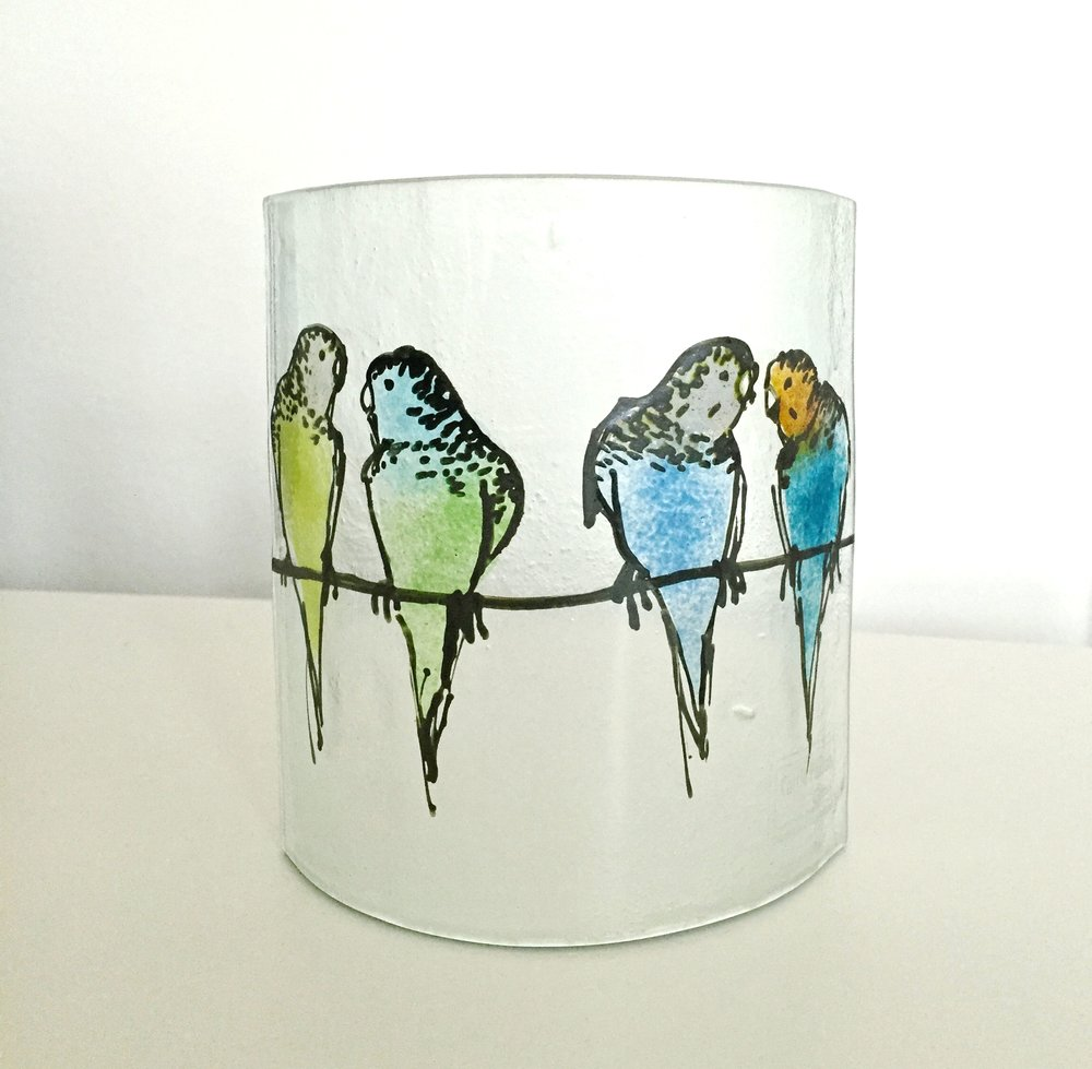 Small Budgie 's' Curve £35