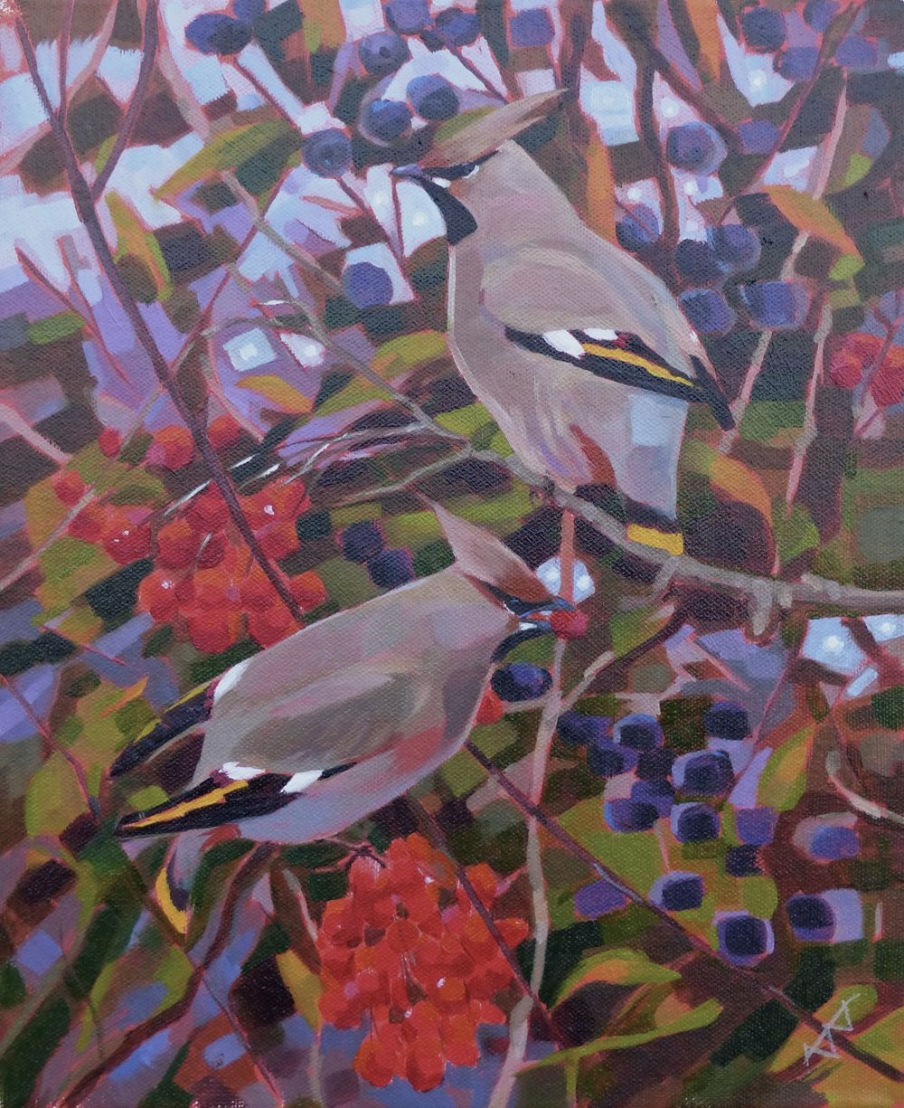 Waxwings with Guelder Rose and Blackthorn acrylic on canvas SOLD