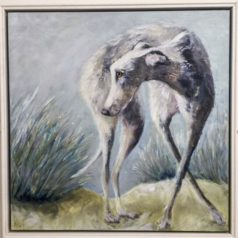 Holkham Hound mixed media 54.5 x 54.5 cm # £825 (framed) SOLD