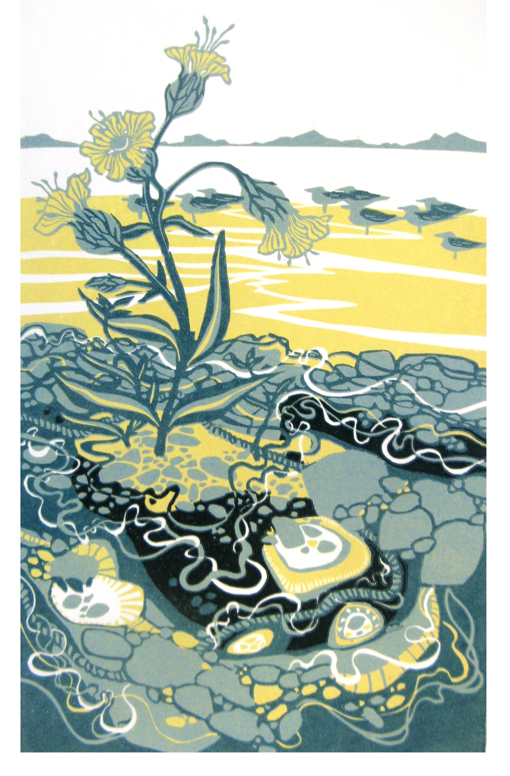 Sea Campion and Gulls  linocut  £150 (unframed)