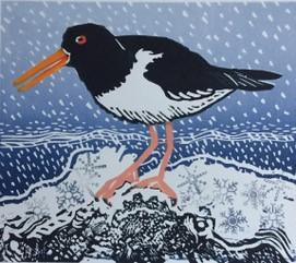 Shalder in the Snow   linocut   £65.00