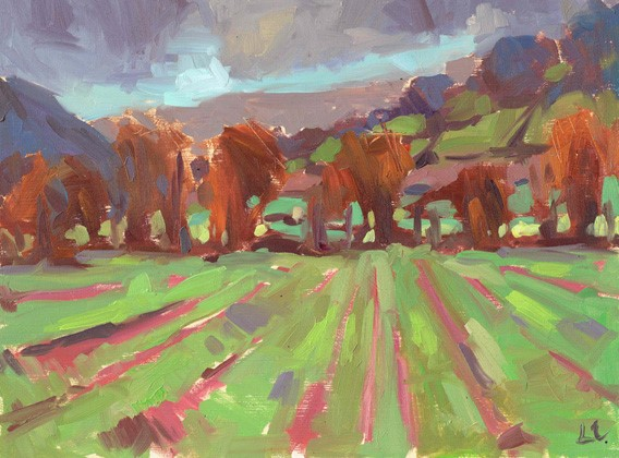 Seeded Fields Bwlch  oil on board  21cm X 17cm image size  35cm X 30cm frame size  £195