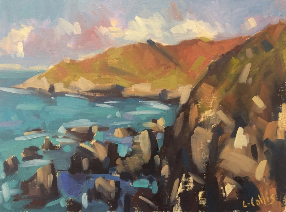 Morte Point Rocks  oil on board  21cm X 17cm image size  35cm X 30cm frame size  £195