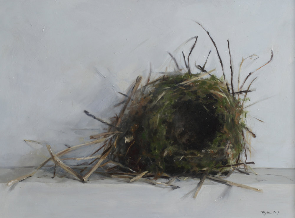 Birds Nest   oil on gesso panel   30 x 40cm painting size  45 x 55cm frame size  £850