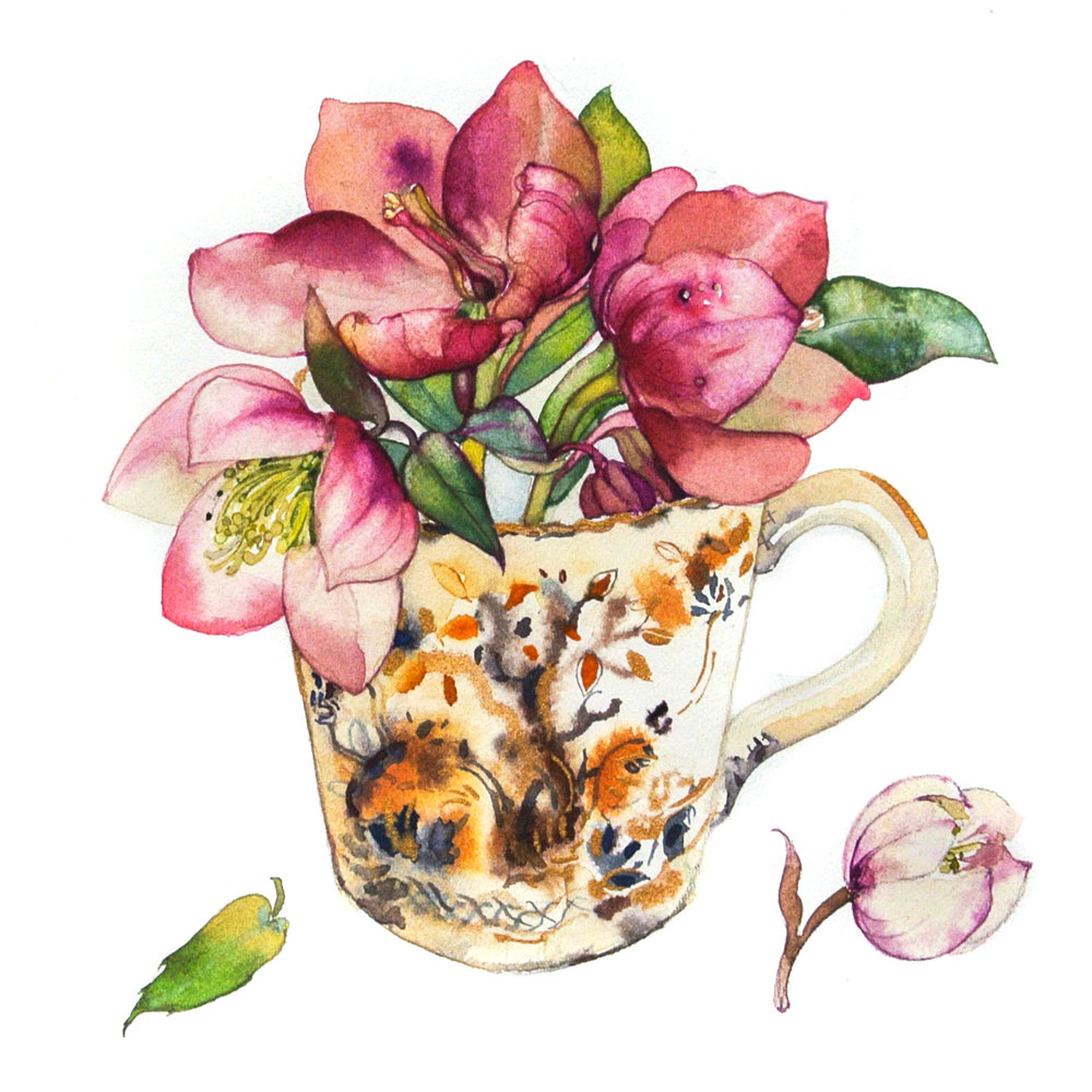 Tea Cup Floral 3  watercolour  30 x 30 cm (unframed)  £250
