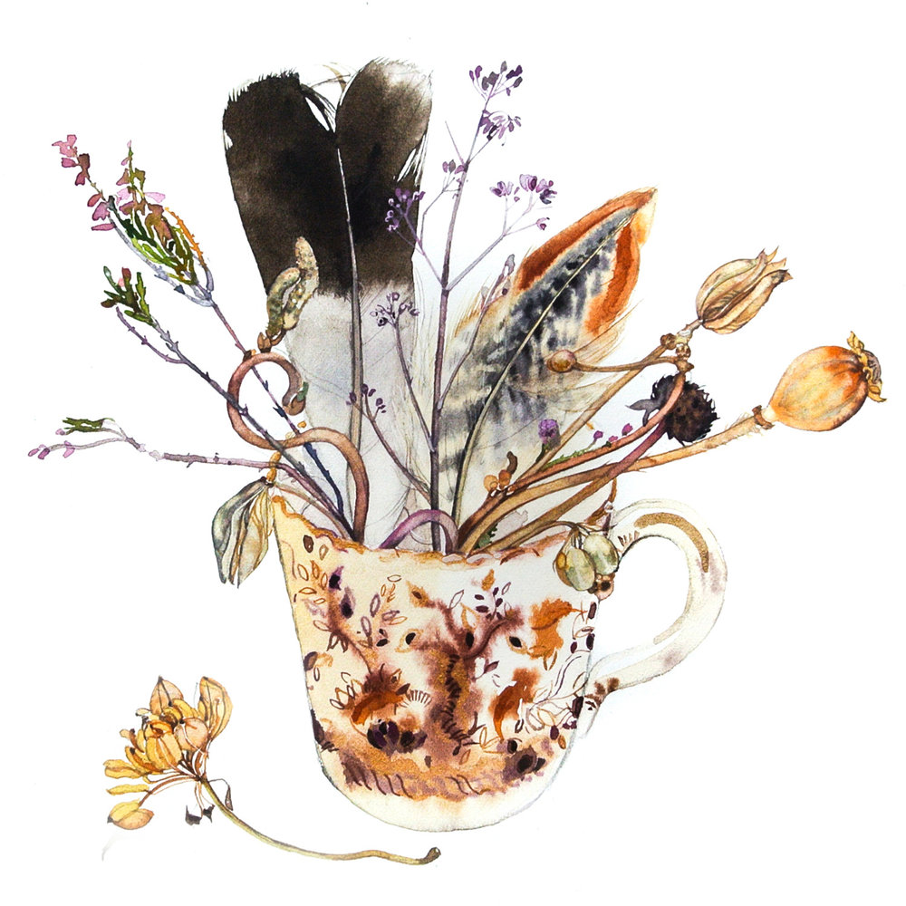 Tea Cup with Feathers  watercolour  40 x 40 cm (unframed)  £295