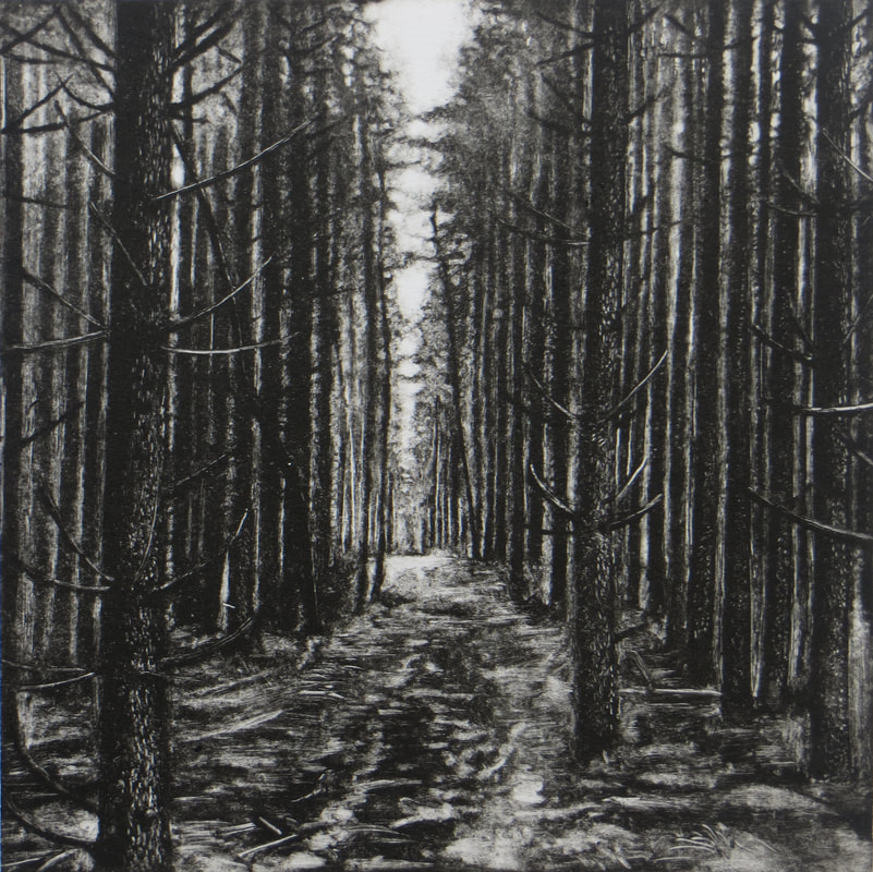 Forest  Intaglio Photopolymer  £95
