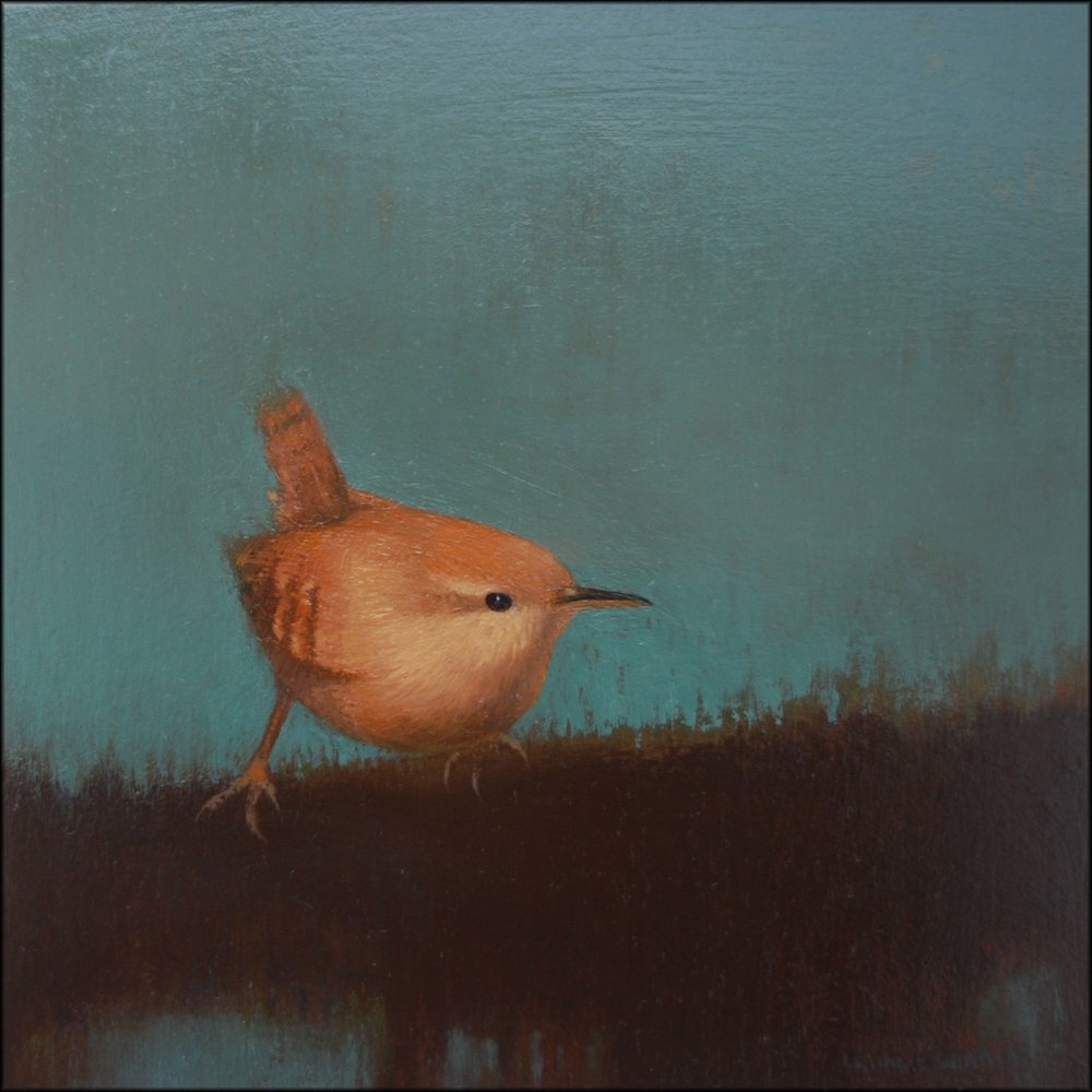 Wren I  oil on board  20cm x 20cm  £495