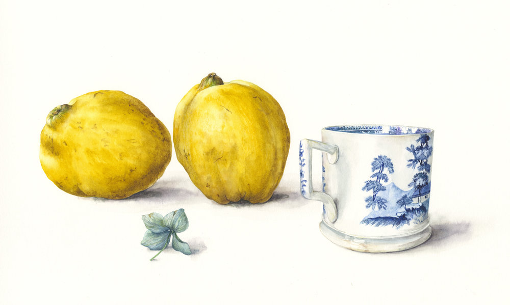 Willow Pattern Cup and Quinces  watercolour on paper  38 x 22 cm image  61 x 45 cm framed  £1600