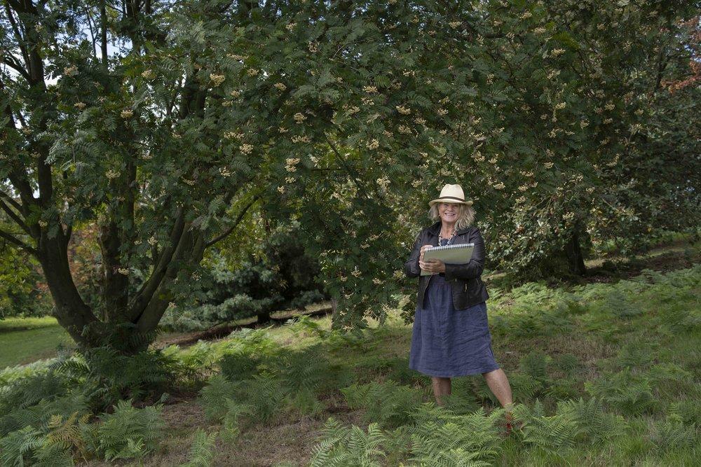 Lesley Arboretum Sept-21.jpg