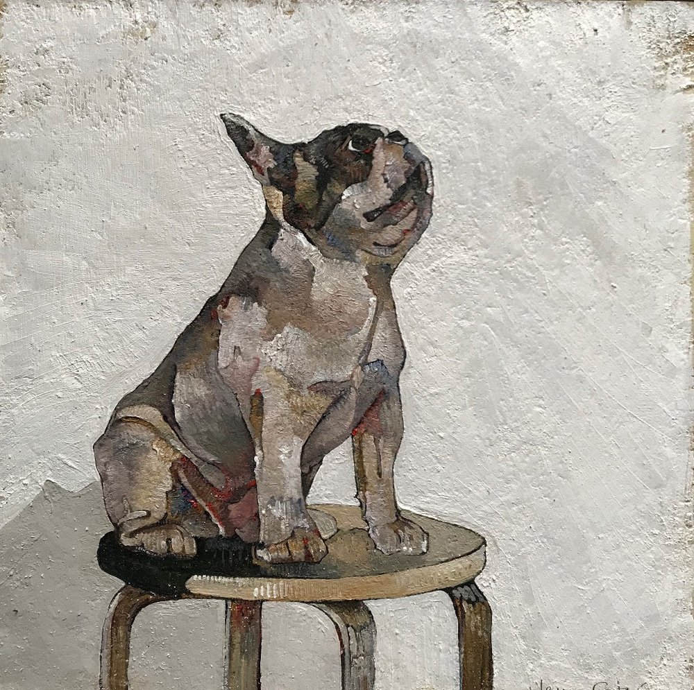 French Bulldog on Stool  oil on board  26 x 26cm  £250
