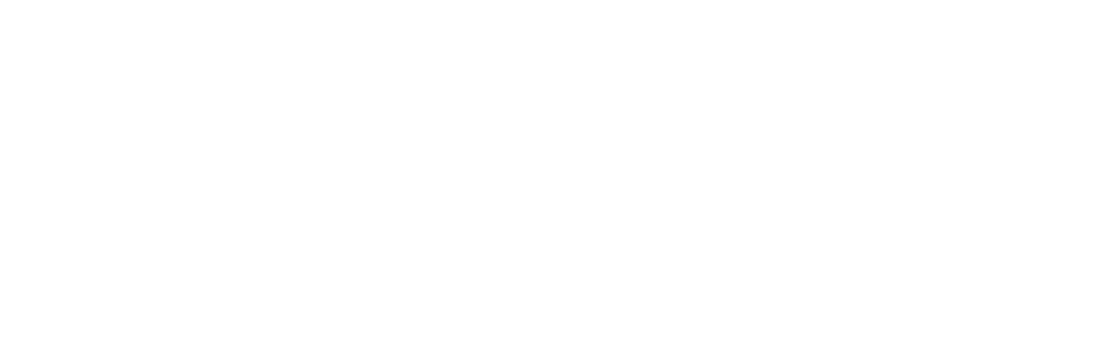 The Life Purpose Experience