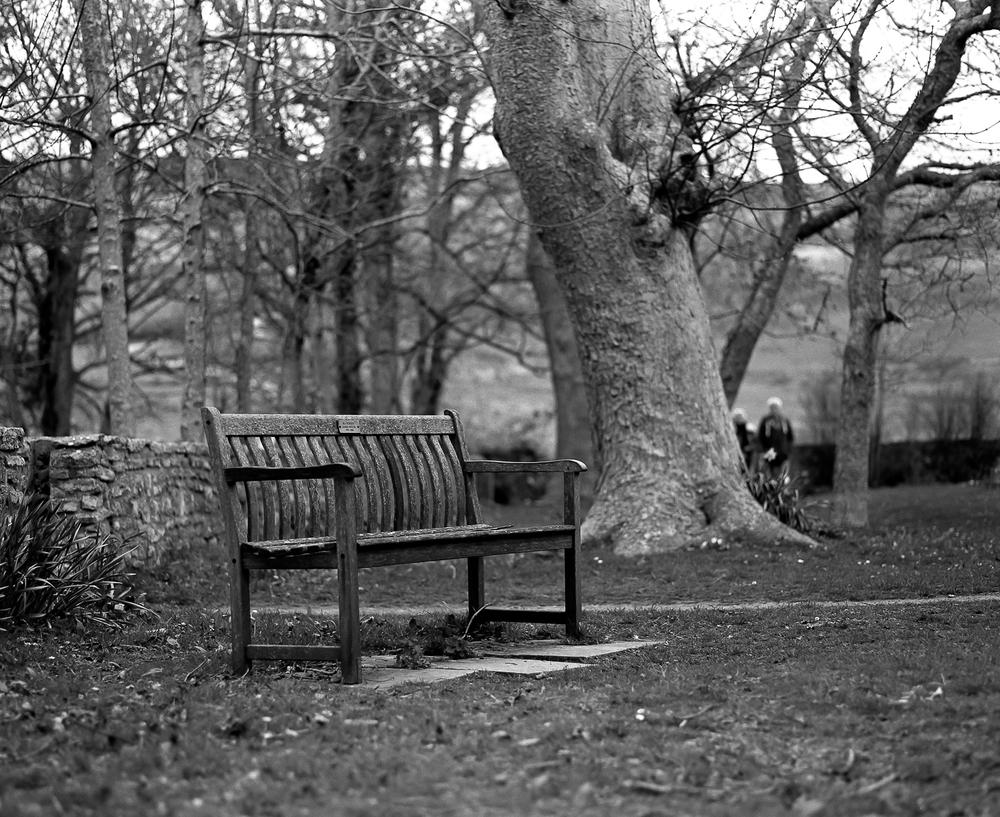 Tyneham Bench