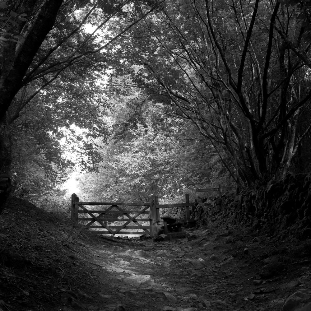 Cheddar Gorge Gate