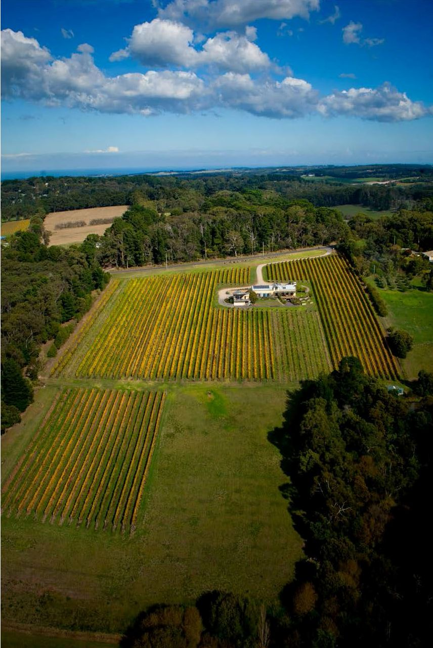 A bird's eye view of Eldridge Estate