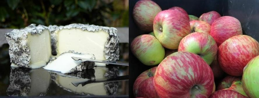 Main Ridge Cheese and Red Hill apples are two of the Mornington Peninsula's best flavours