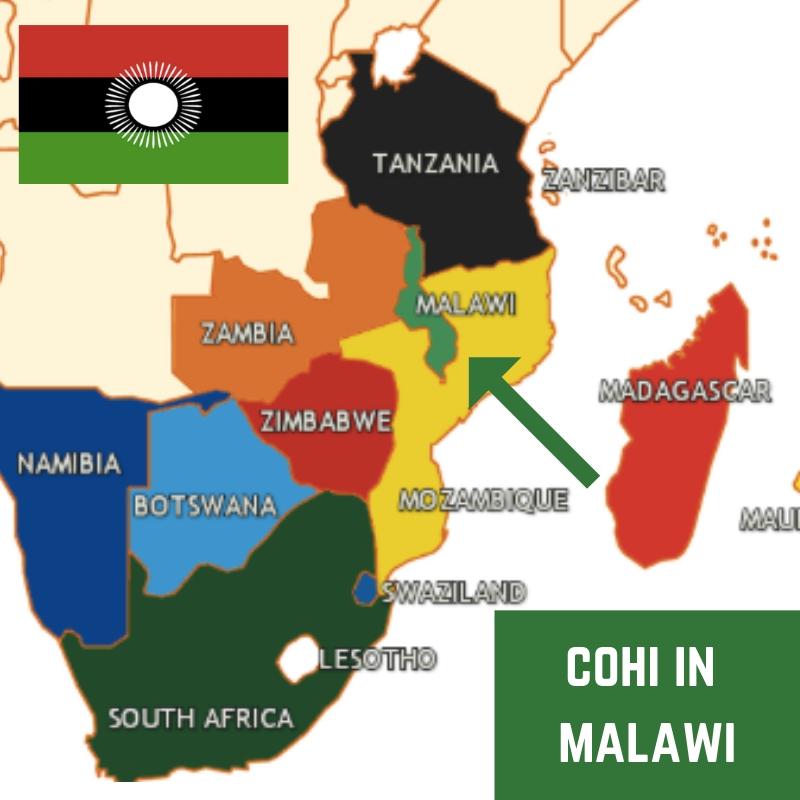 _Malawi and COHI.jpg