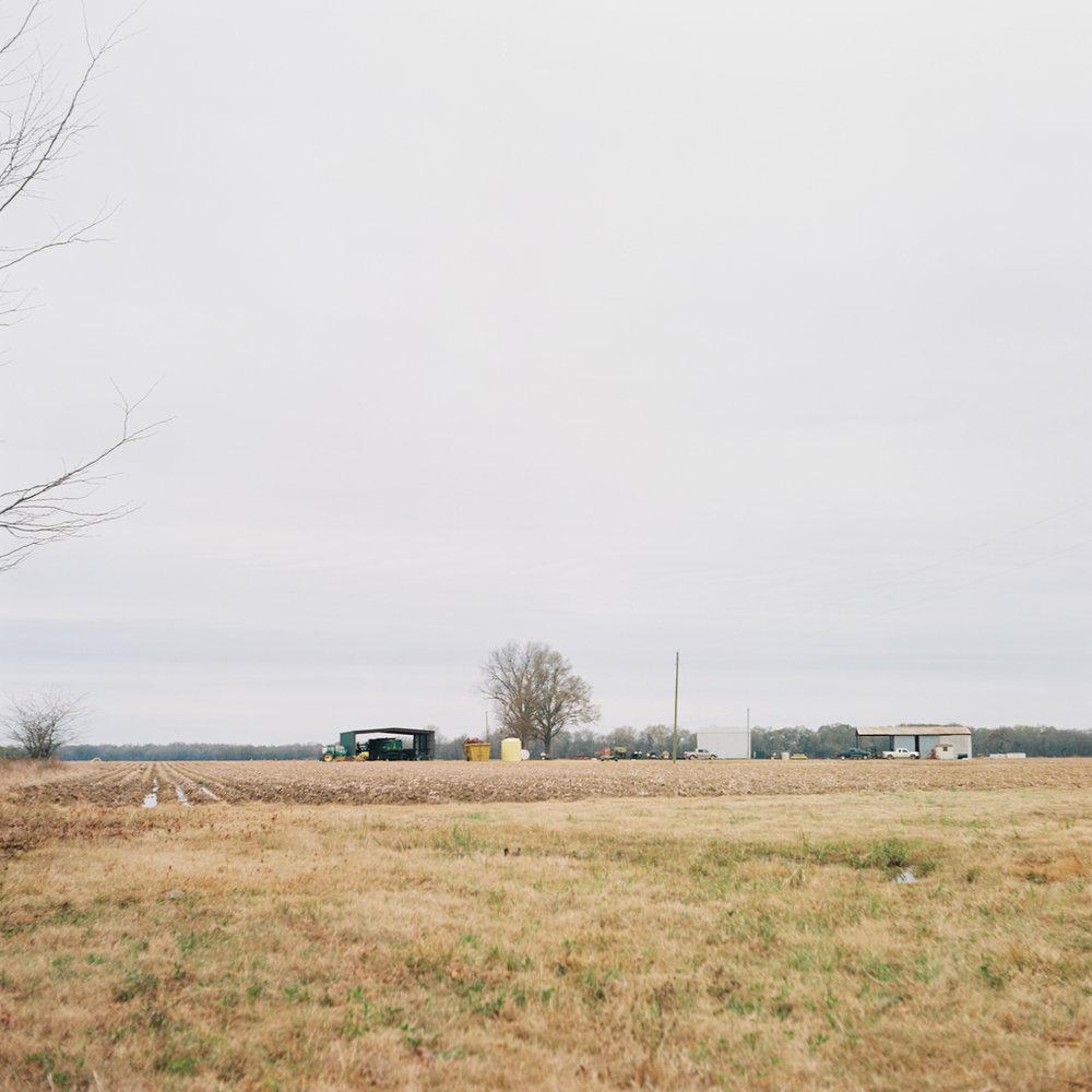 Jack's Farm - 003.jpg