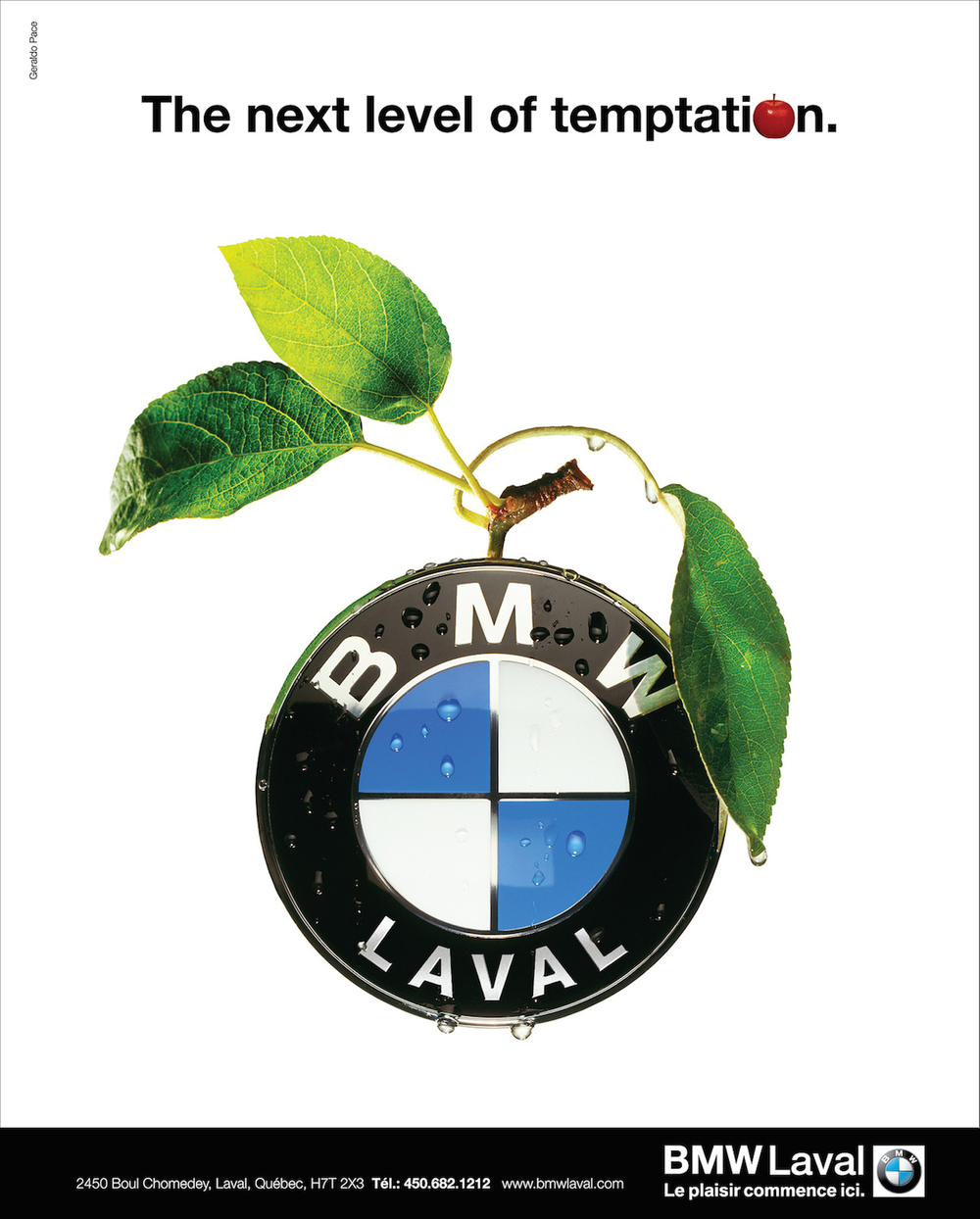 59 BMW Apple.jpg