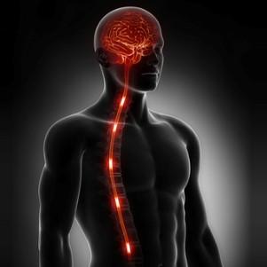 body_mind_healing_.jpg