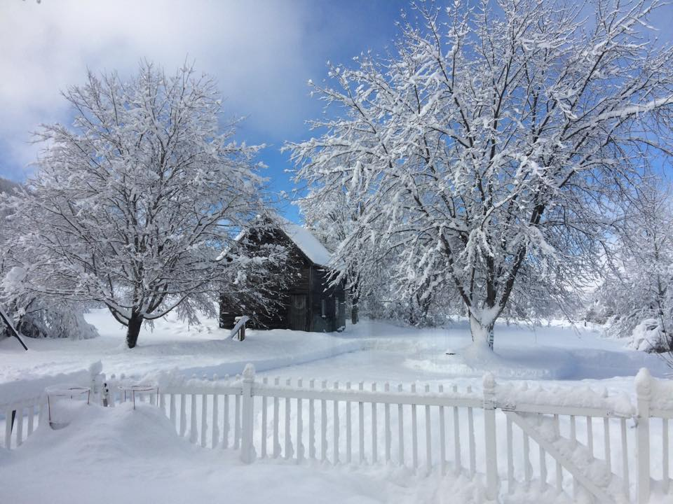 Snow Scenes at Vermont Bed and Breakfast at Russell Young Farm