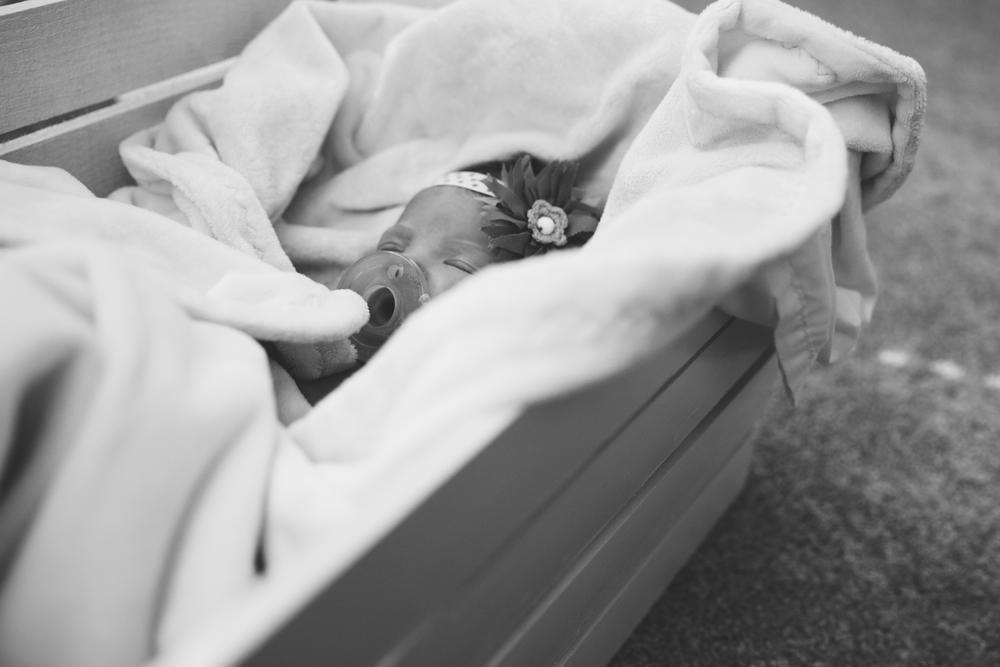 Lyla Newborn-13.JPG