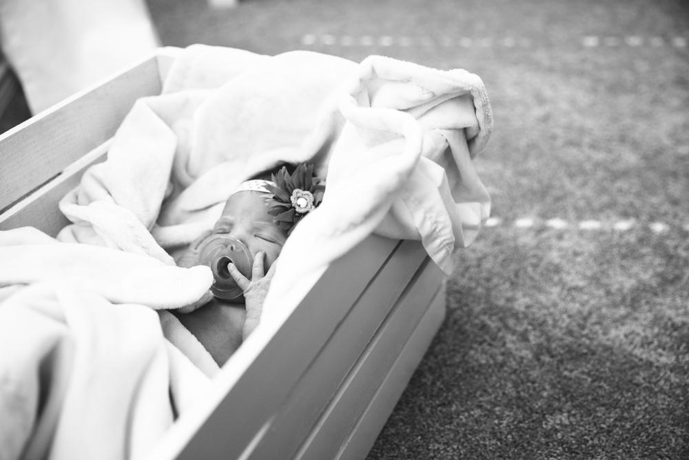 Lyla Newborn-19.JPG