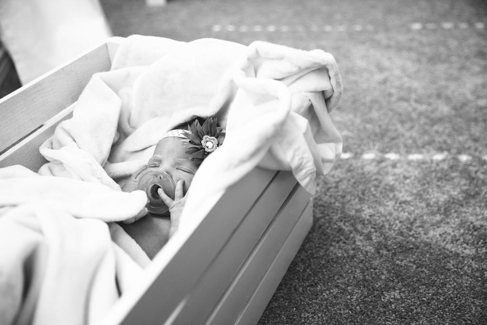Lyla Newborn-21.JPG