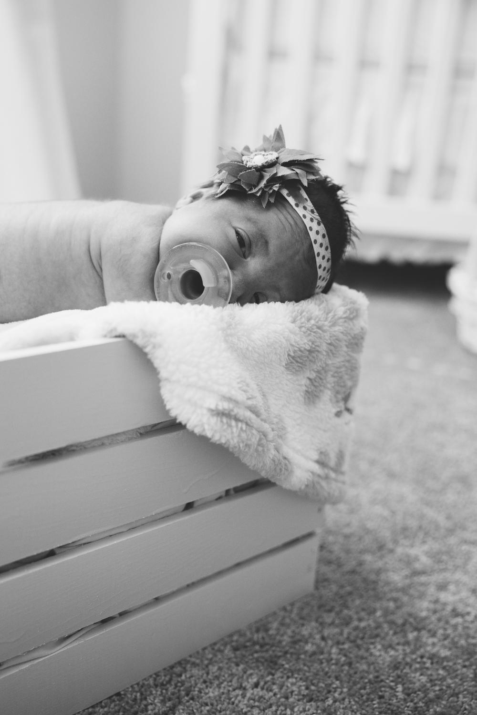 Lyla Newborn-27.JPG