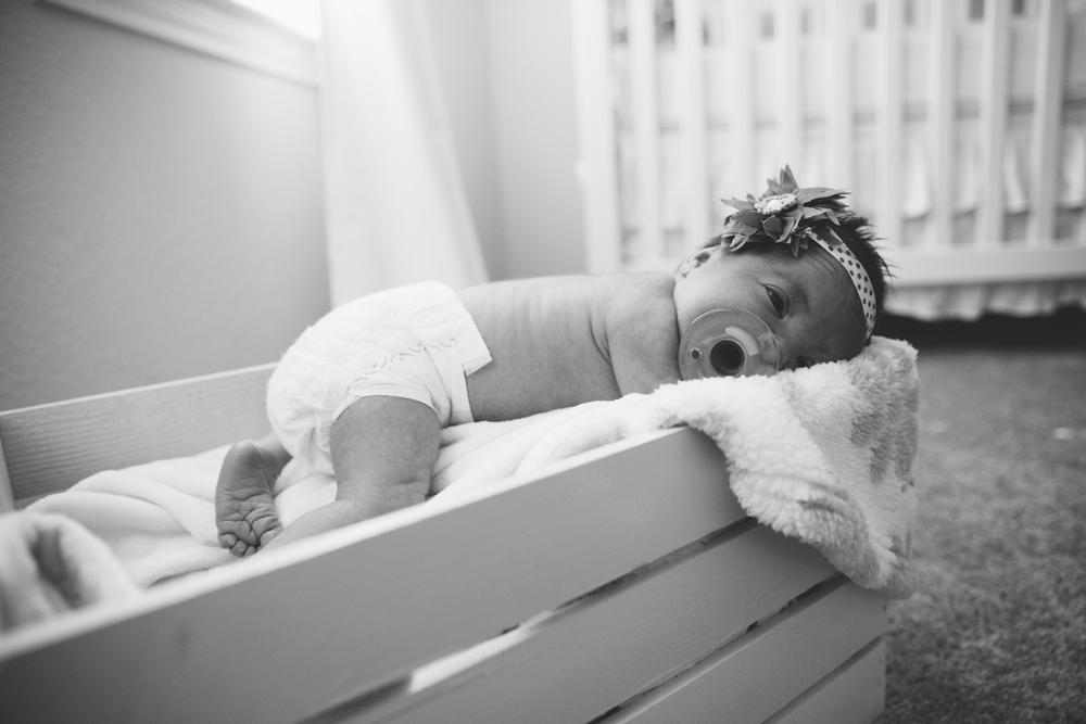 Lyla Newborn-28.JPG