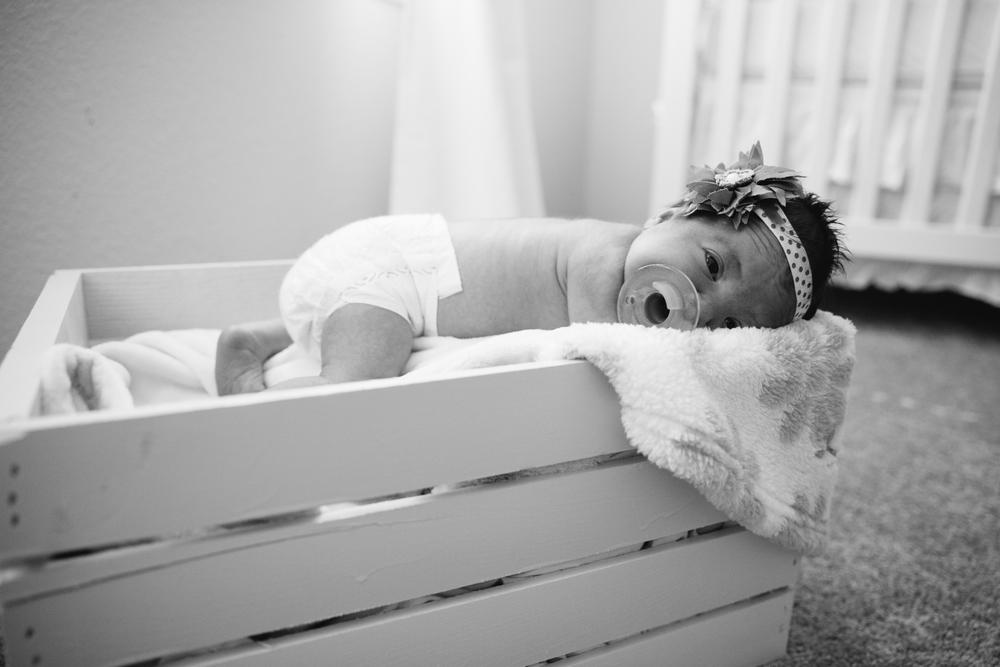 Lyla Newborn-32.JPG
