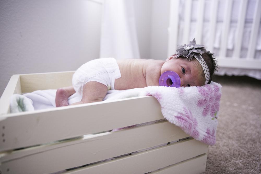 Lyla Newborn-34.JPG