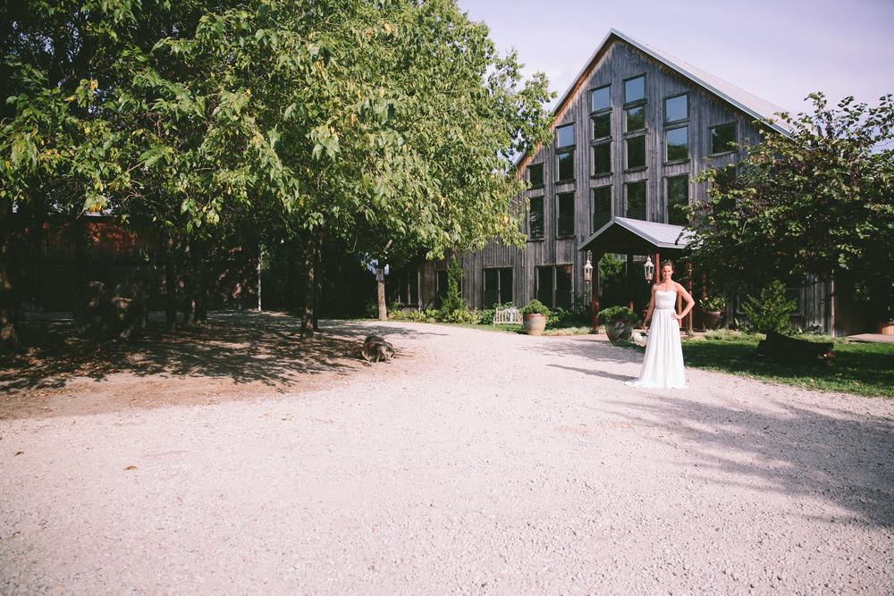Fountain Wedding-184.jpg