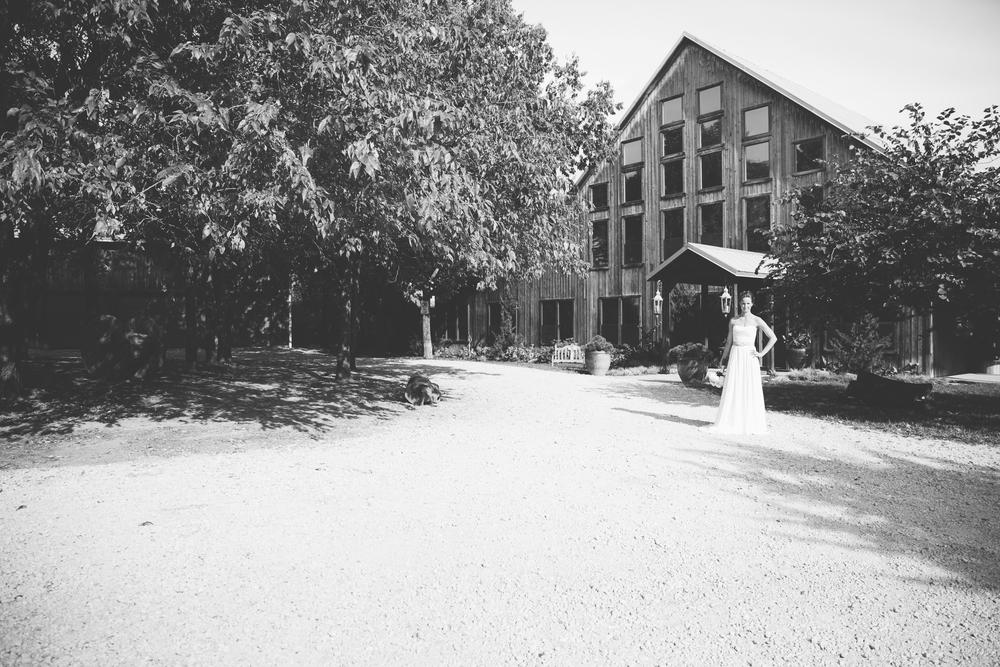 Fountain Wedding-185.jpg