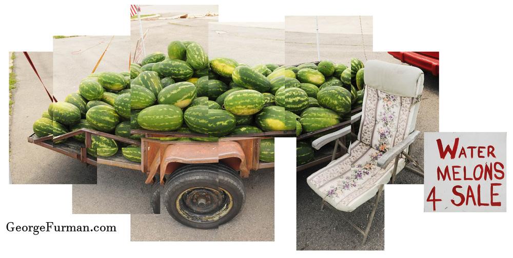 Water Melons 1.jpg