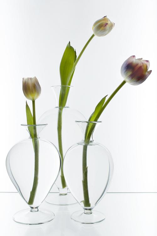 Vases Transference Design Lab