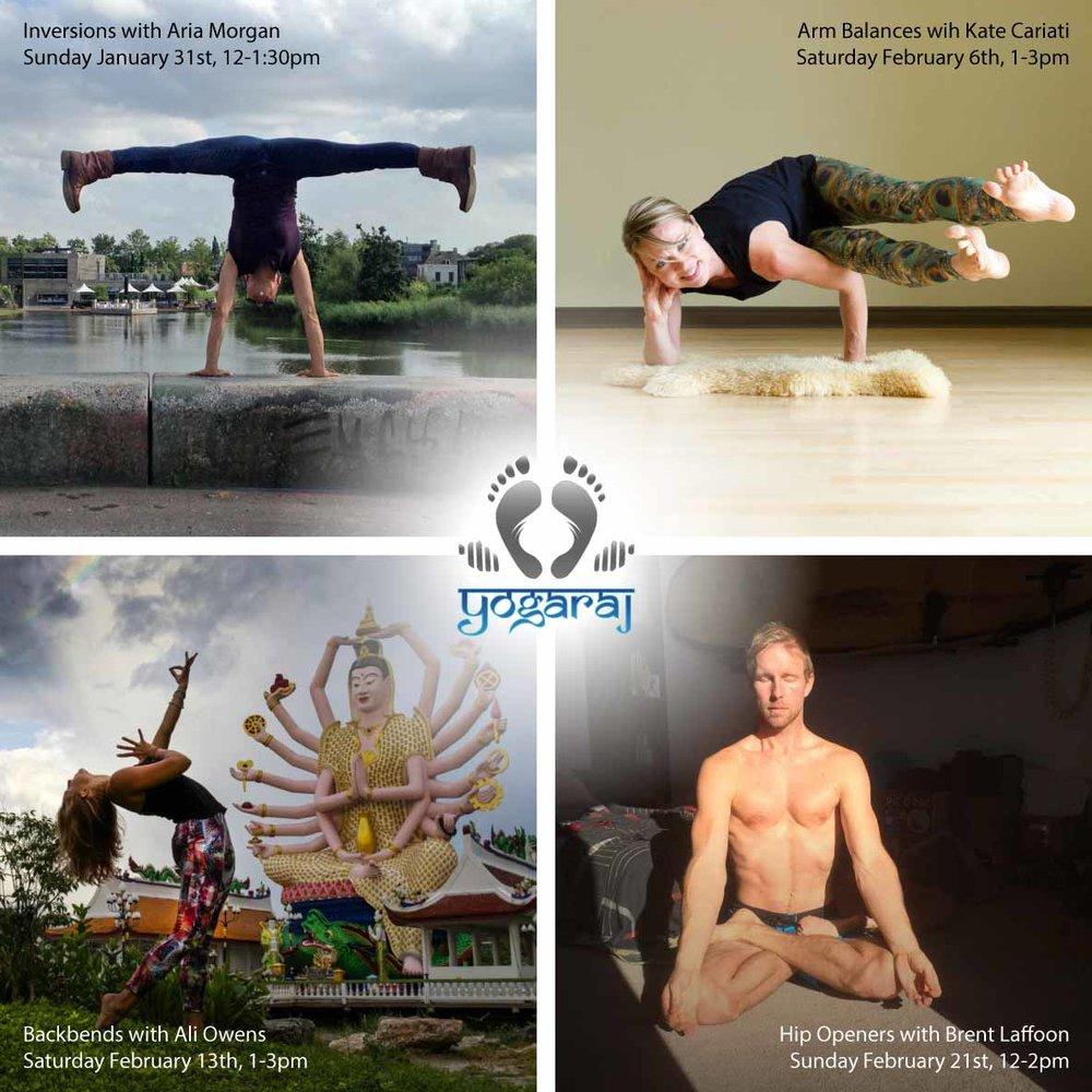 Yoga Raj Teacher Workshops