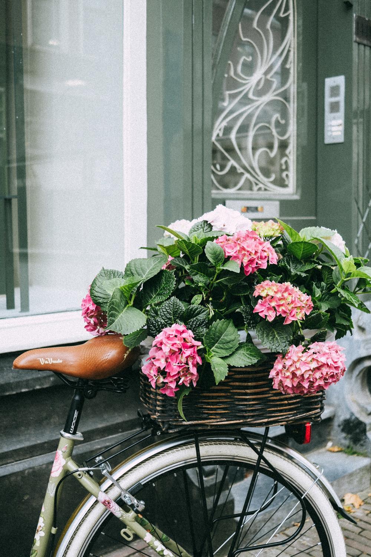 Alina Sepp Photography | ROTTERDAM