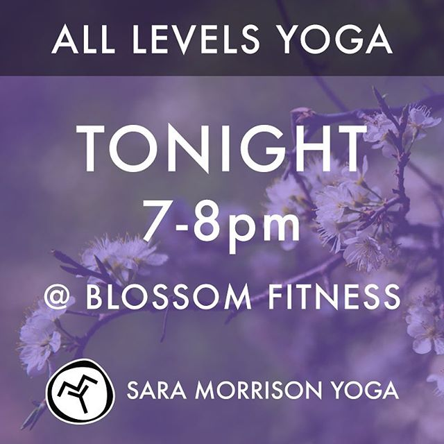 I'll be teaching an all-levels yoga class tonight (7-8pm) at Blossom Fitness in West Frankfort. Your first class at Blossom Fitness is free!