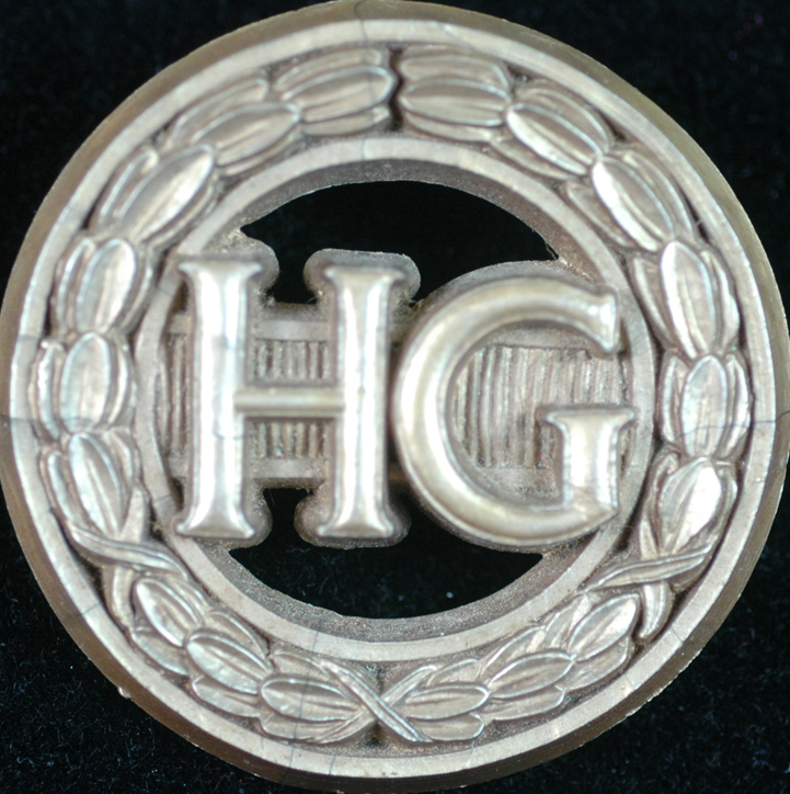 Women Plastic HG badge 100 dpi 720 px square copy.jpg