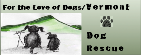 For the Love of Dogs/Vermont Dog Rescue