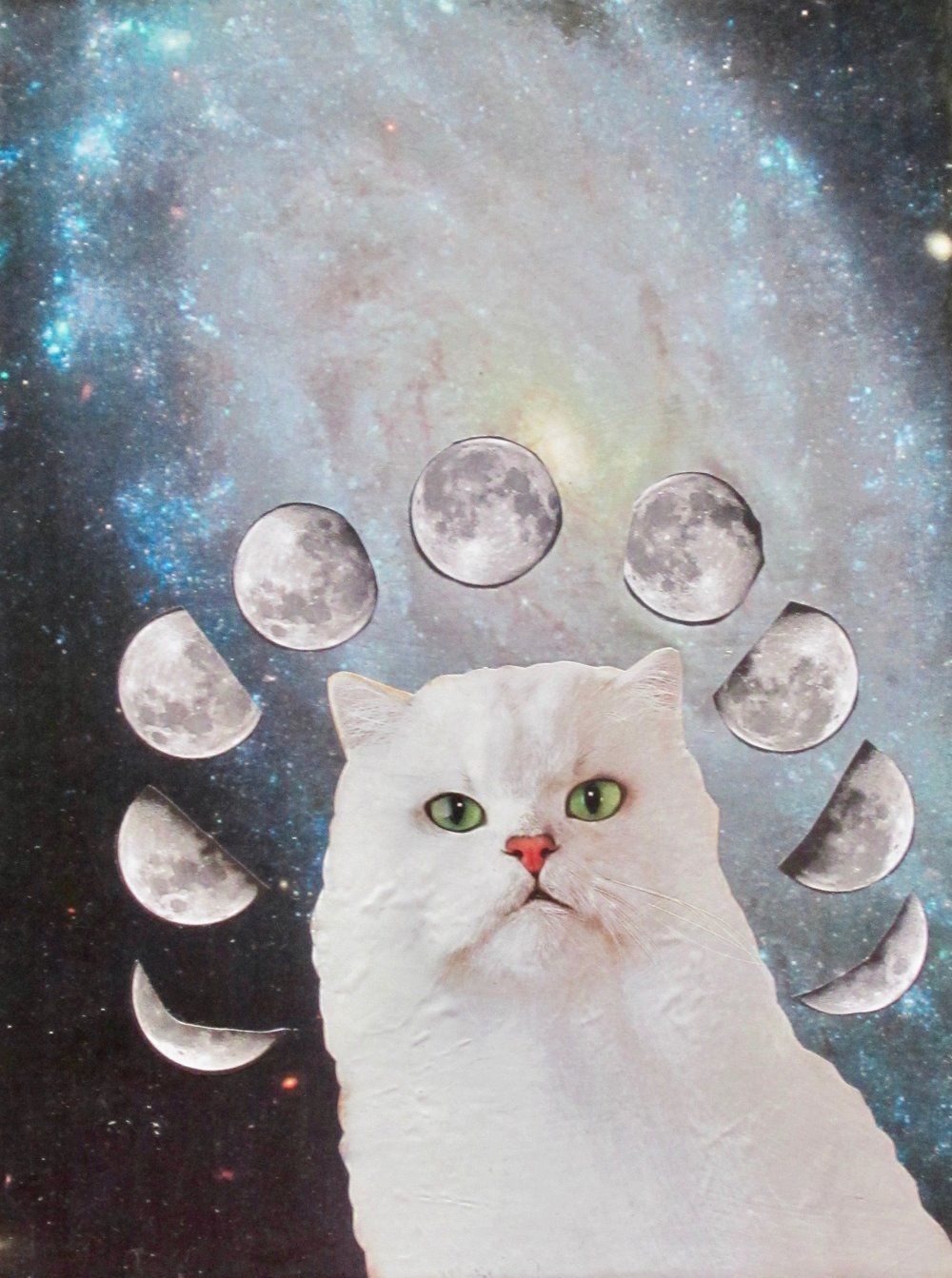 """The Cat of Many Moons"""