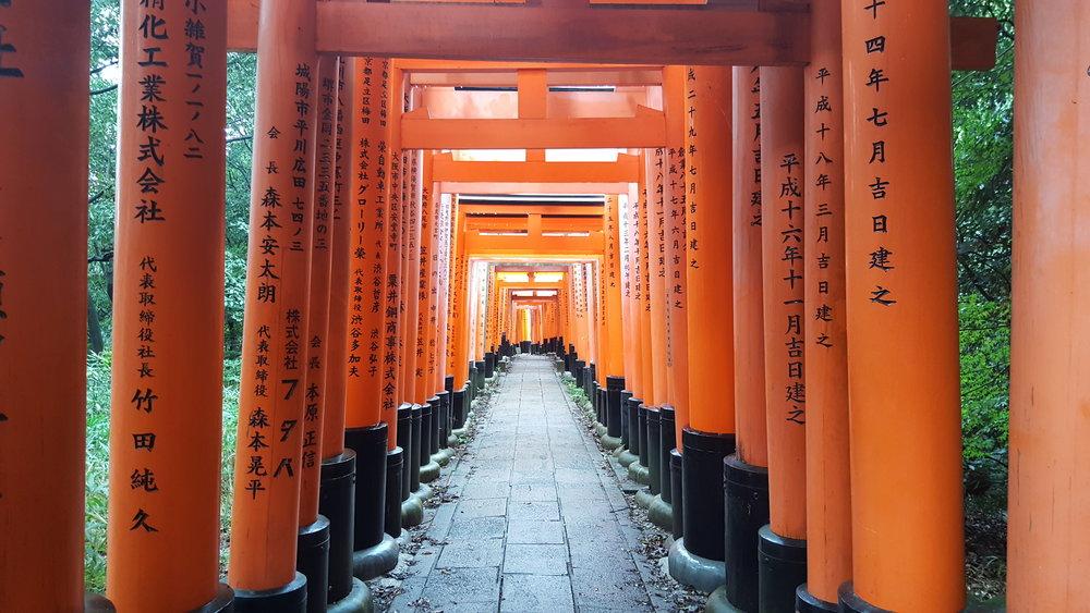 Female solo traveler in Kyoto, Japan