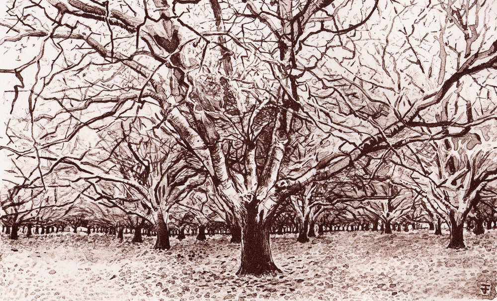 Orchard-Litho.jpg
