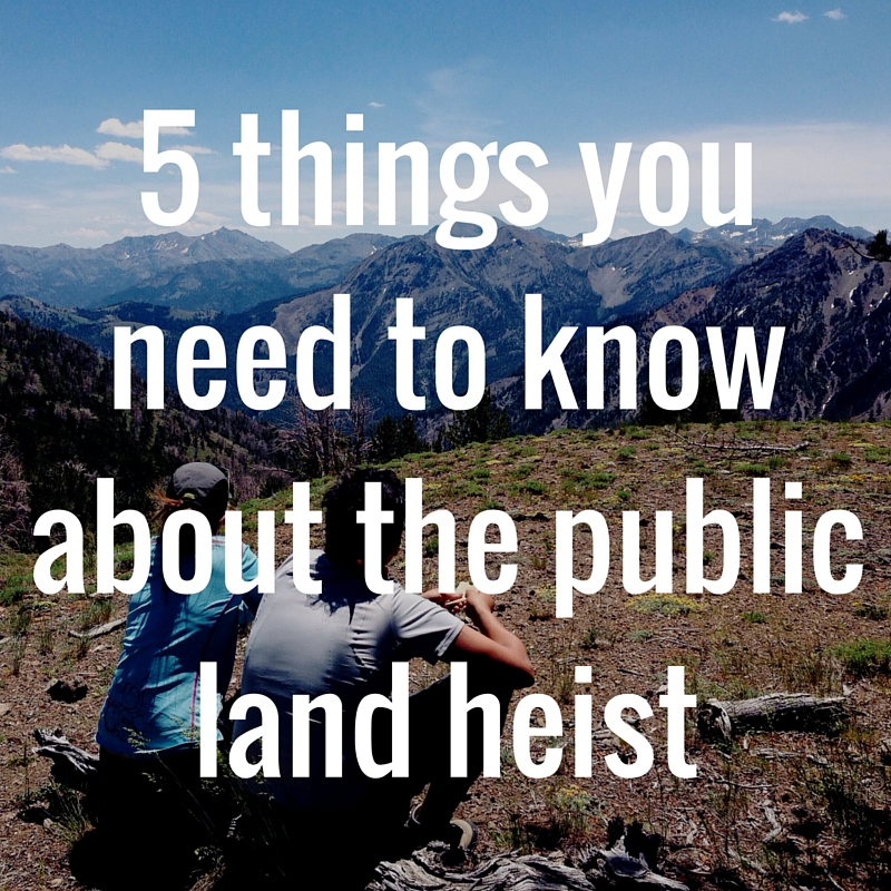 5 things you need to know about the public land heist.jpg
