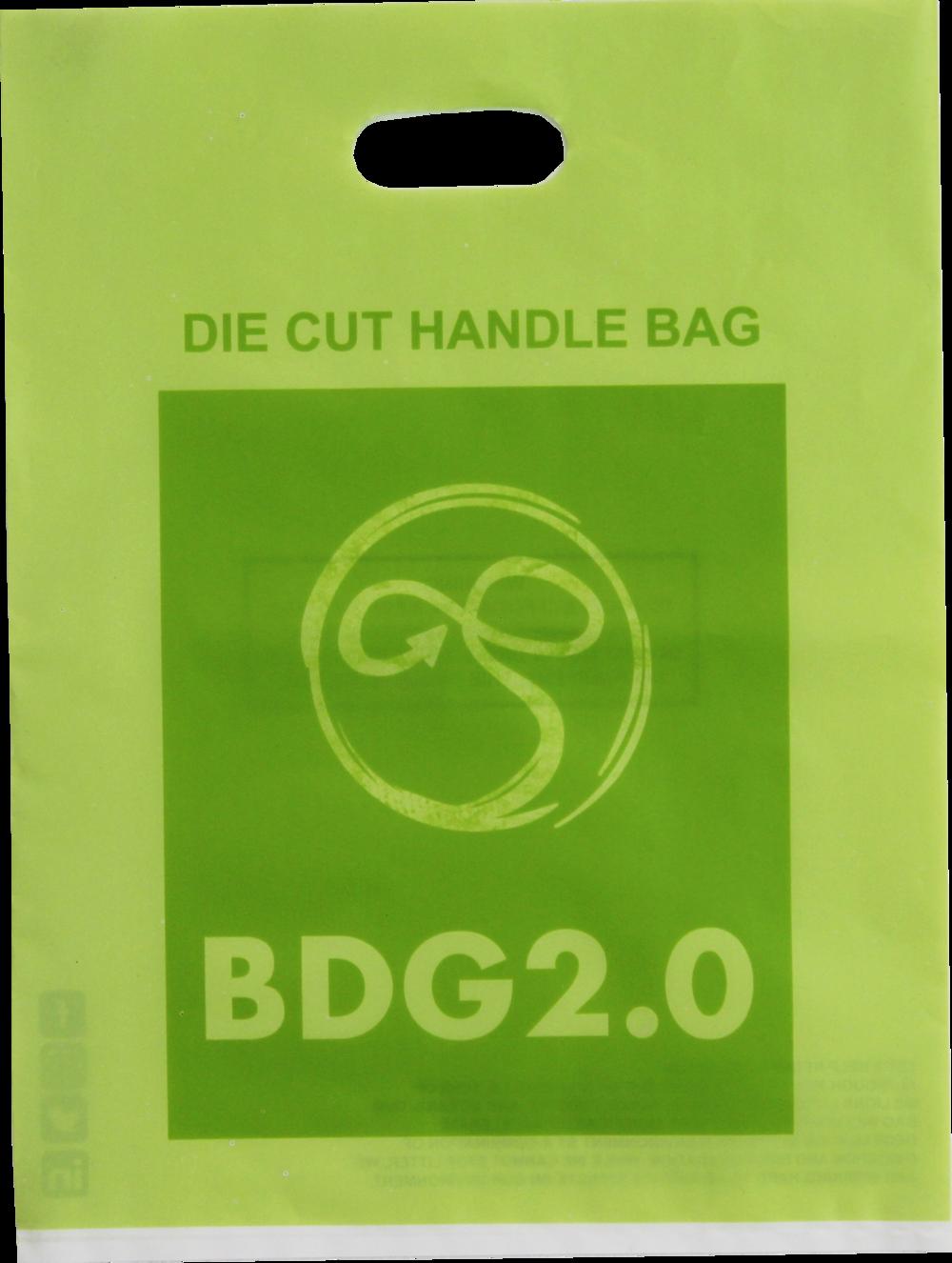 BDG 6.png