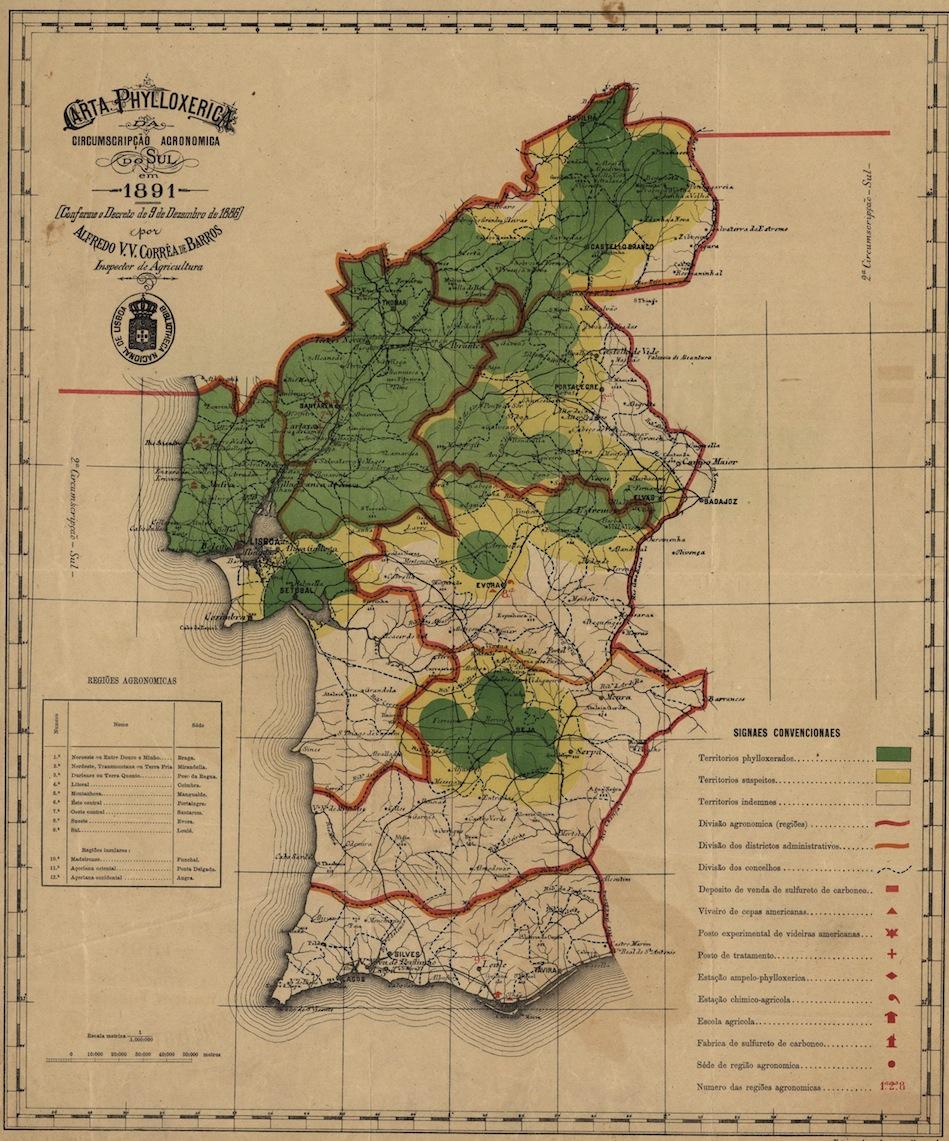 Portugal Phylloxera.jpg