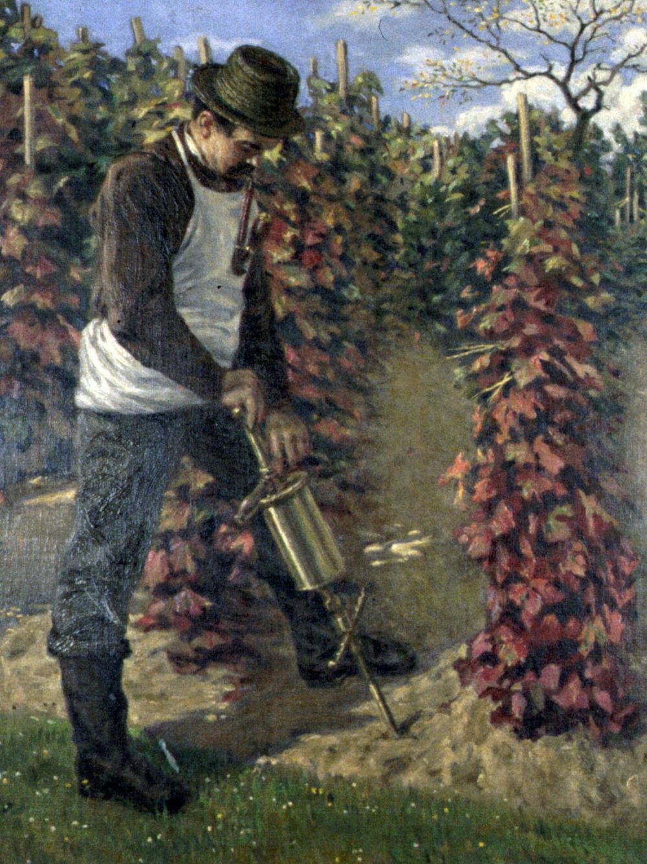 Reblausbekaempfung_1904.jpg