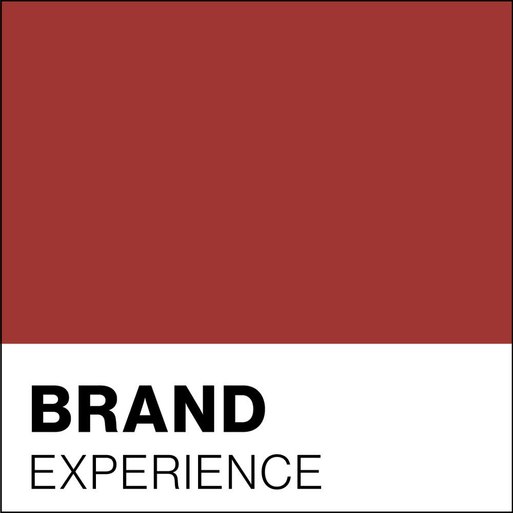 BrandExperiencePantone.png