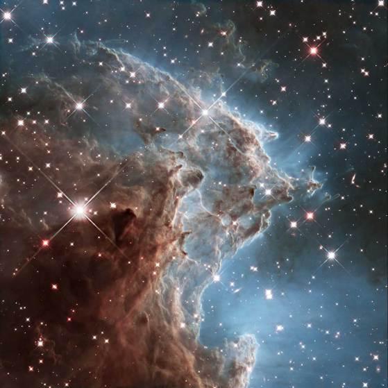 monkey-head-nebula.jpg